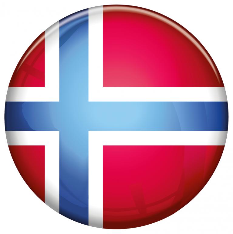 Fotografisches Logo vektorisieren (Entwurf)